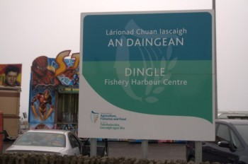 Dingle harbour sign
