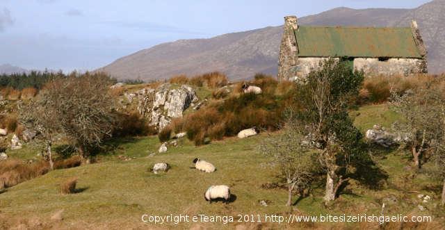 Irish Gaeltacht