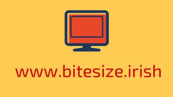 www.bitesize.irish