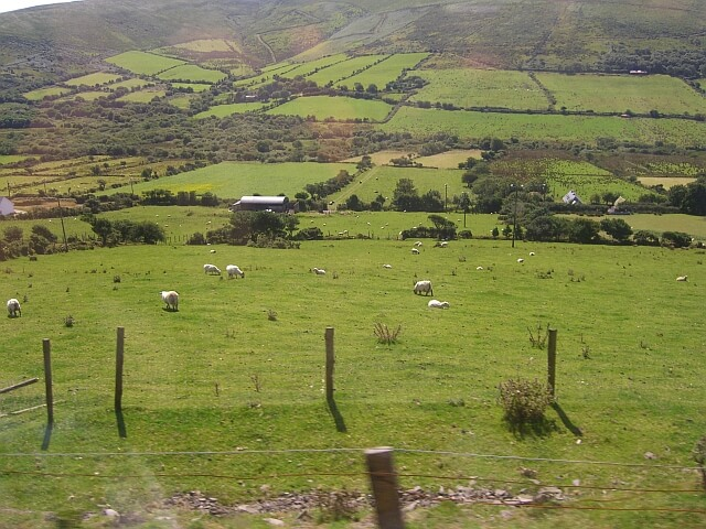 Irish Language in the Medieval Times
