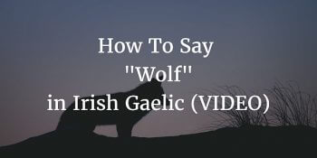 How To Say – Wolf in Irish Gaelic article (VIDEO)
