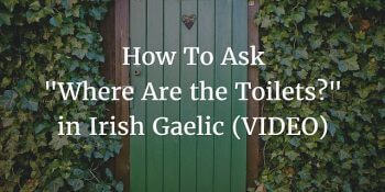 How To Say - Where Are the Toilets in Irish Gaelic (VIDEO) article