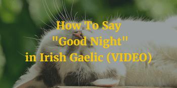 How To Say - Good Night in Irish Gaelic (VIDEO) article