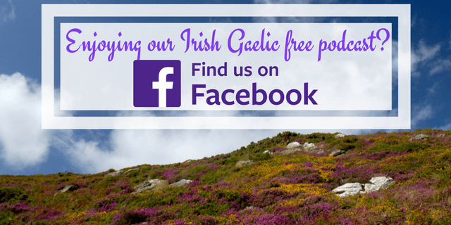 Bitesize Irish Gaelic Facebook Page 1