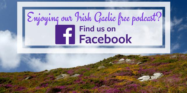 Bitesize Irish Gaelic Facebook Page 1