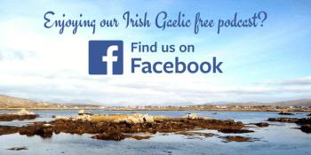 Bitesize Irish Gaelic Facebook page 2