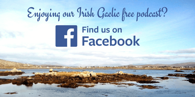 Bitesize Irish Gaelic Facebook page 2