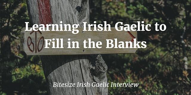 Learning Irish Gaelic to Fill in the Blanks