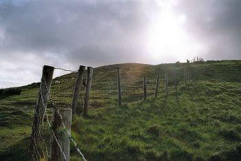 Bitesize Learning Principles for Irish Gaelic