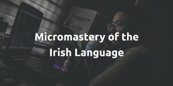 Micromastery of the Irish Language