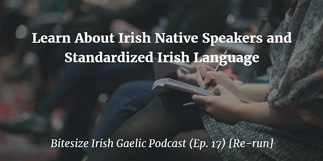 Learn About Irish Native Speakers and Standardized Irish Language