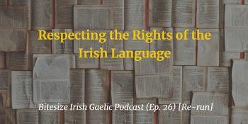 Respecting the Rights of the Irish Language