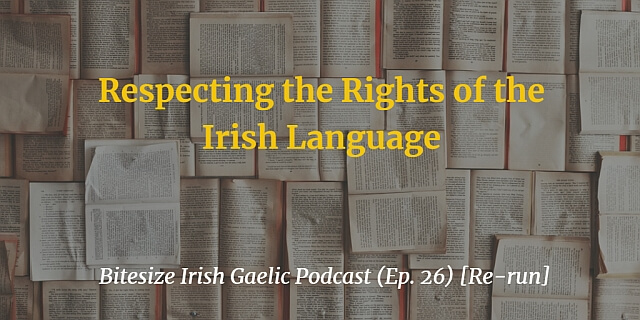 Respecting the Rights of the Irish Language