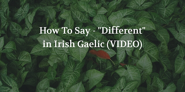 "How To Say - ""Different"" in Irish Gaelic (VIDEO)"
