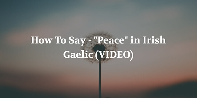 """We publish weekly Irish pronunciations videos to help you learn specific words and phrases. This week we're teaching you how to say """"Peace"""" in Irish Gaelic."""