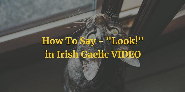 "How To Say - ""Look!"" in Irish Gaelic VIDEO"