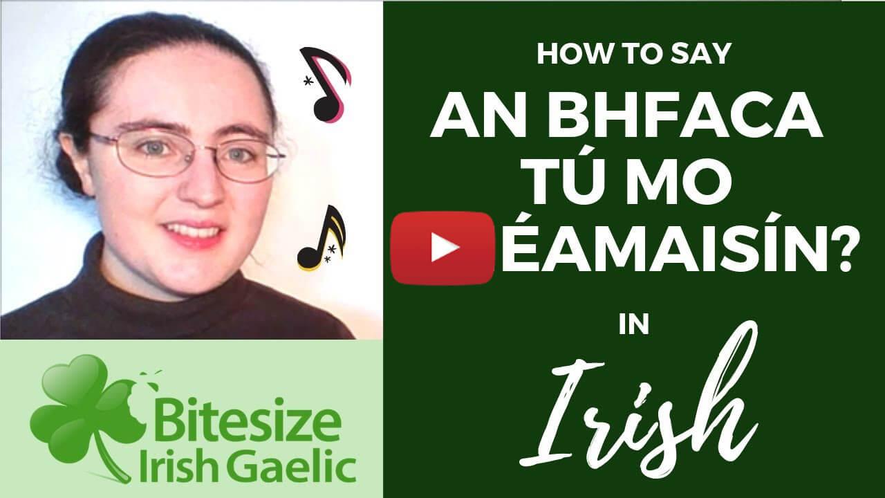 video how to say An bhfaca tú mo Shéamaisín social media