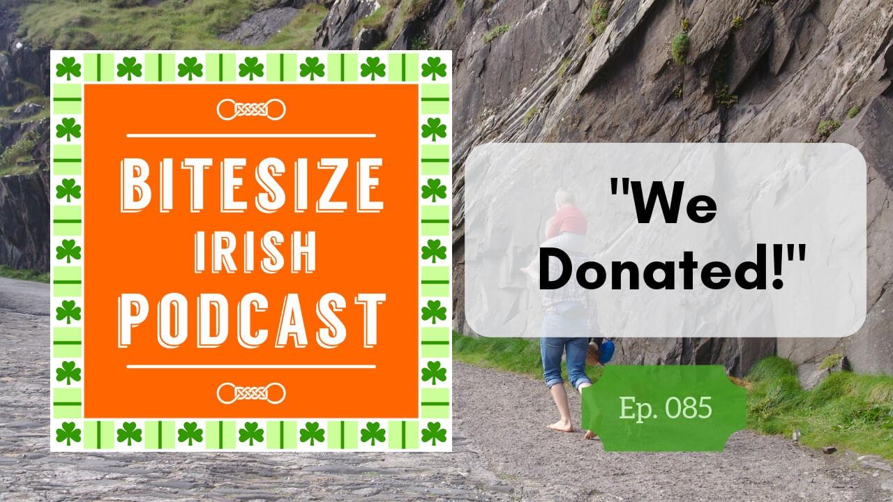 Irish language donation