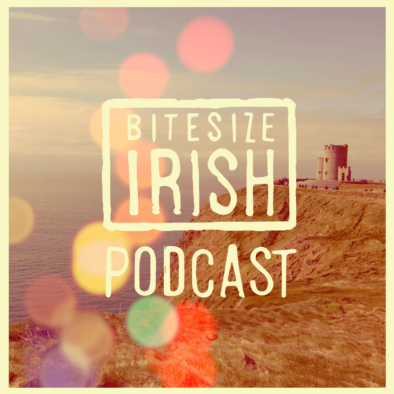 Image result for bitesize irish podcast